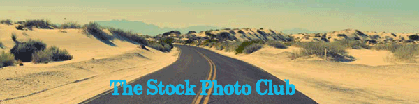The Stock Photo Club cover